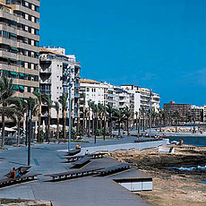 torrevieja taxi 8 plazas aeropuerto valencia